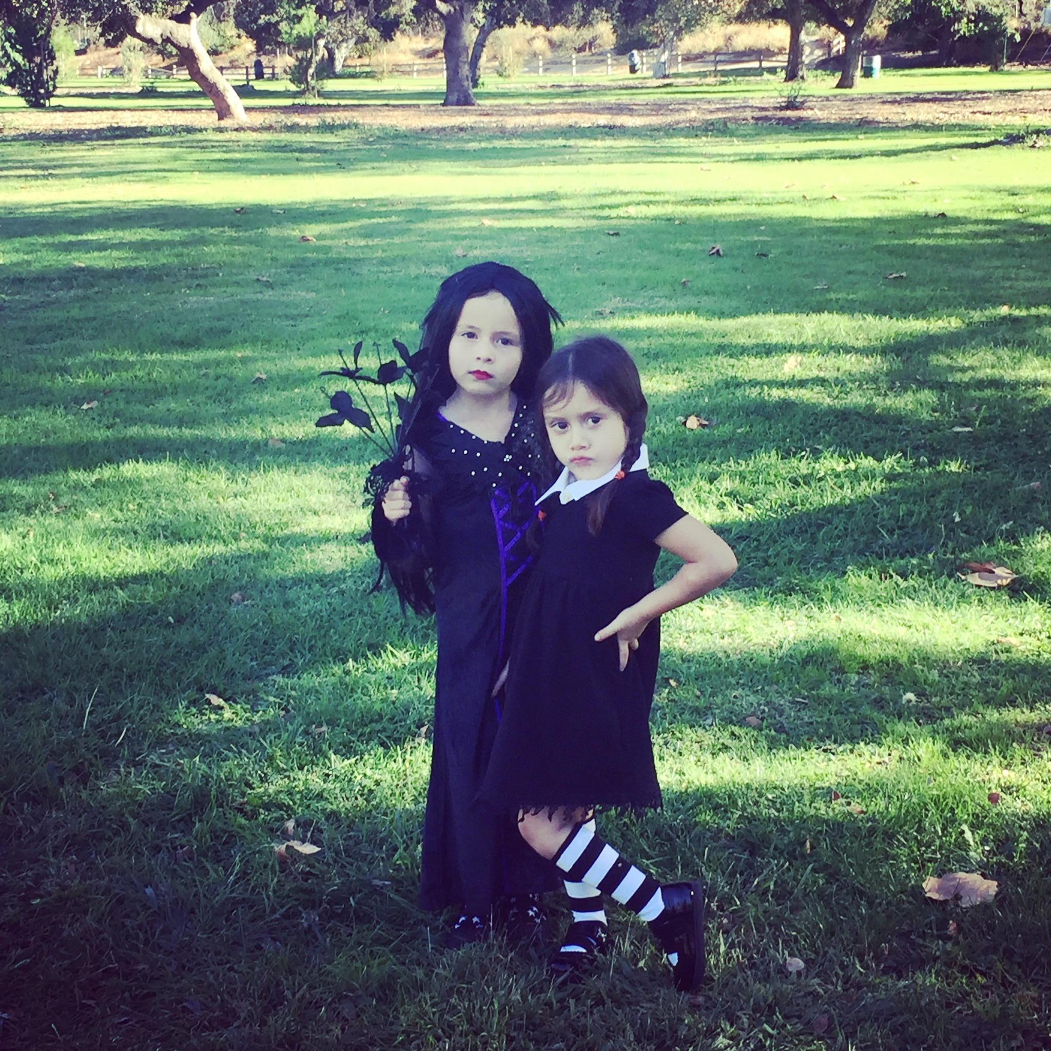 Diy Morticia And Wednesday Addams Halloween Costumes Cathie Filian
