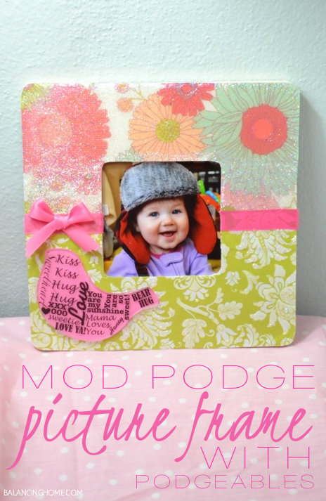 Sweet And Chic Mod Podge Podgeable Frame Cathie Filian